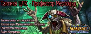 taktika-boya-professor-merzocid