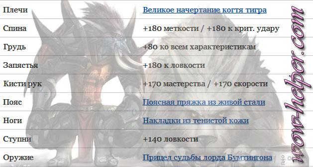 Nalozhenie-char-dlya-MM-Hanta-5-4-8-PvE