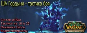 taktika-ShA-gordyni