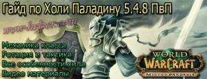 gaid-po-holi-paladinu-5-4-8-pvp
