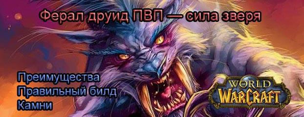 Гайд ферал друид ПВП 7.1.5 — сила зверя